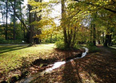 Sinologie-Goettingen-Herbst-03